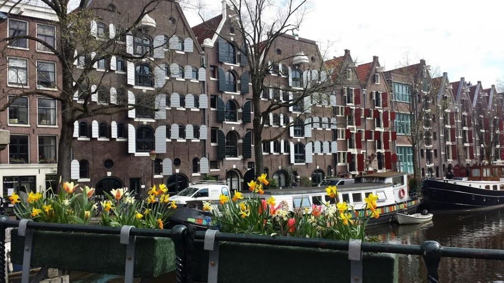 case de a lungul canalului